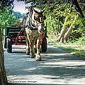 Horse Powered Mackinac Island by LeeAnn McLaneGoetz McLaneGoetzStudioLLCcom