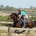 Horse Race by Jeff Swan