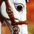 Horse Ride by John Rizzuto