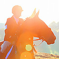 Horse Show Flares by Alice Gipson