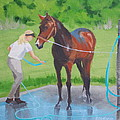 Horse   Wash by Robert Rohrich