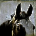 Horse Whispers by Gothicrow Images
