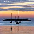 Horsehoe Island Sunset by David T Wilkinson