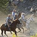 Horsemen Marching In Dust by Sean Stauffer