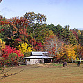 Horses And Barn In The Fall 2 by Duane McCullough