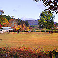 Horses And Barn In The Fall 4 by Duane McCullough