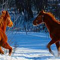 Horses At Play by Tracy Winter