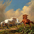 Horses Balking At Approaching Storm by Rudolf Koller