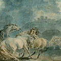 Horses Fighting by Sawrey Gilpin