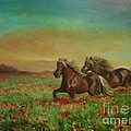 Horses In The Field With Poppies by Sorin Apostolescu