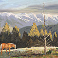 Horses Of The Tetons by Tommy Thompson
