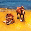 Horses On The Coast Of Brittany by Menega Sabidussi