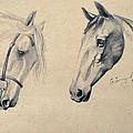 Horses by Stanislav Atanasov
