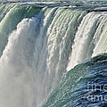 Horseshoe Falls by Rodney Campbell