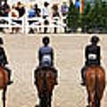 Horseshow Pano by Alice Gipson