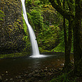Horsetail Falls Columbia River Gorge by Vishwanath Bhat