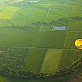 Hot Air Balloon Over Napa Valley California by Diane Diederich