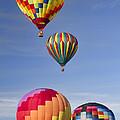 Hot Air Balloon Race by Kathy Clark
