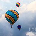 Hot Air Balloon Trio by Eleanor Abramson