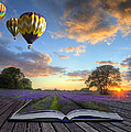 Hot Air Balloons Lavender Landscape Magic Book Pages by Matthew Gibson