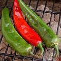 Hot And Spicy - Chiles On The Grill by Steven Milner