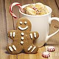 Hot Chocolate Toasted Marshmallows And A Gingerbread Cookie by Juli Scalzi