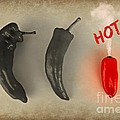 Hot by Clare Bevan