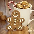 Hot Cocoa And Gingerbread Cookie by Juli Scalzi