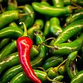 Hot Hot Hot by Nicholas  Pappagallo Jr