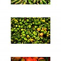 Hot Pepper Collage by Thomas Marchessault