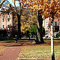Hot Pink Hoodie - Davidson College by Paulette B Wright