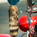 Hot Rod Coon's Tail by Jill Reger
