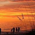 Hot Sunset by Irina Davis