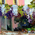 Hotel Baudy Wisteria by Diane McClary