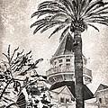Hotel Del Coronado by Peggy Hughes