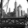 Hotels Seen From Central Park  by Underwood Archives