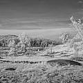 Houcks Ridge  8d00081i by Guy Whiteley