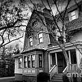 Old House 2  by Miriam Danar