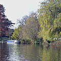House Boat On River Avon by Tony Murtagh