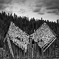 House Broken by Ren Alber