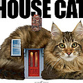 House Cat by Tim Nyberg