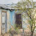 House In Ft. Stockton IIi Muted by Lanita Williams