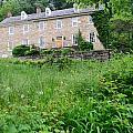 House On A Hill by    Michael Glenn