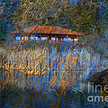 House On Lake by Irina Hays