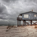 House On The Beach  by Larry Braun