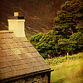 House On The Hills. Wicklow. Ireland by Jenny Rainbow