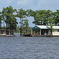 Houseboat - Atchafalaya Basin by Susie Hoffpauir