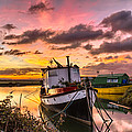 Houseboats On Velator Quay by Dave Wilkinson