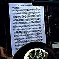 Houston Brass Band In Concert by Norman Gabitzsch