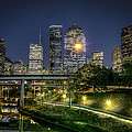 Houston On The Bayou by David Morefield